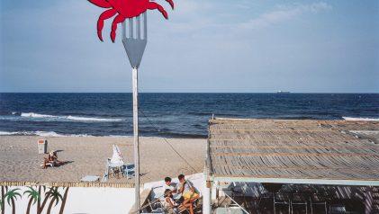 Vicente del Amo, El cangrejo de la playa de El Saler, 1985 (L'Albufera. Visió tangencial). IVAM, Institut Valencià d'Art Modern, Generalitat © Vicente del Amo