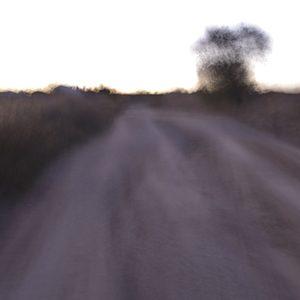 Paseo periurbano006